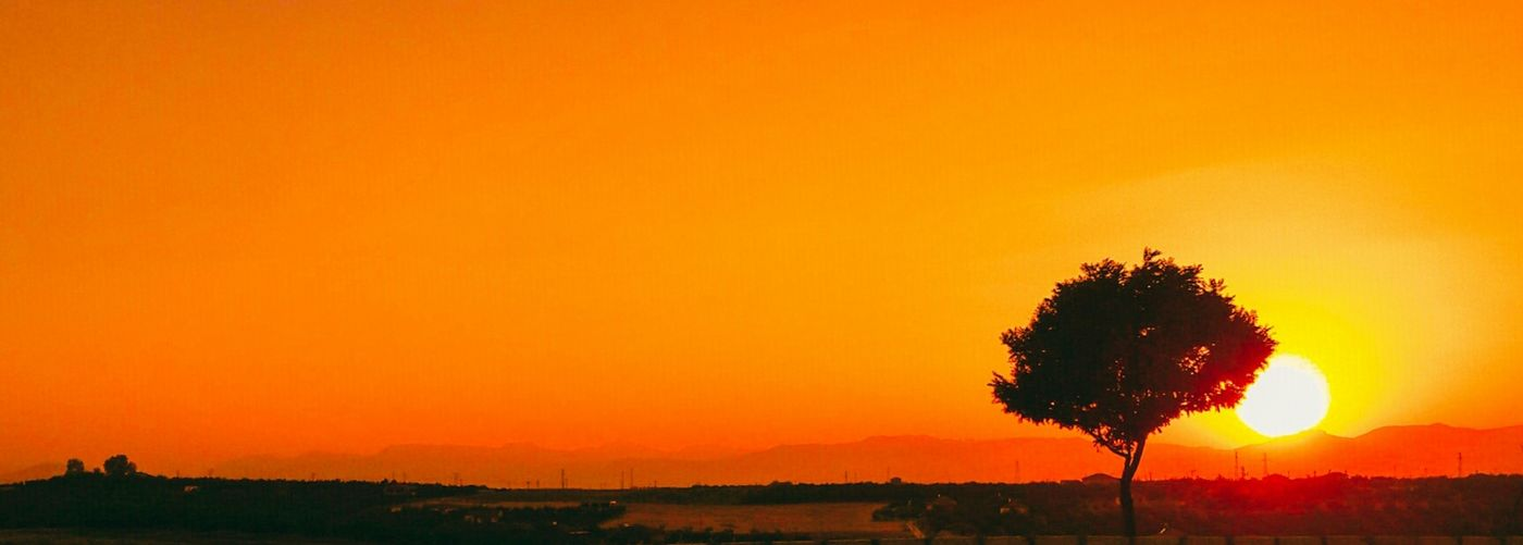Sunset Orange Color Silhouette Nature No People Tree Sky Red Day Backgrounds EyeEm Best Shots Photography Photographer First Eyeem Photo