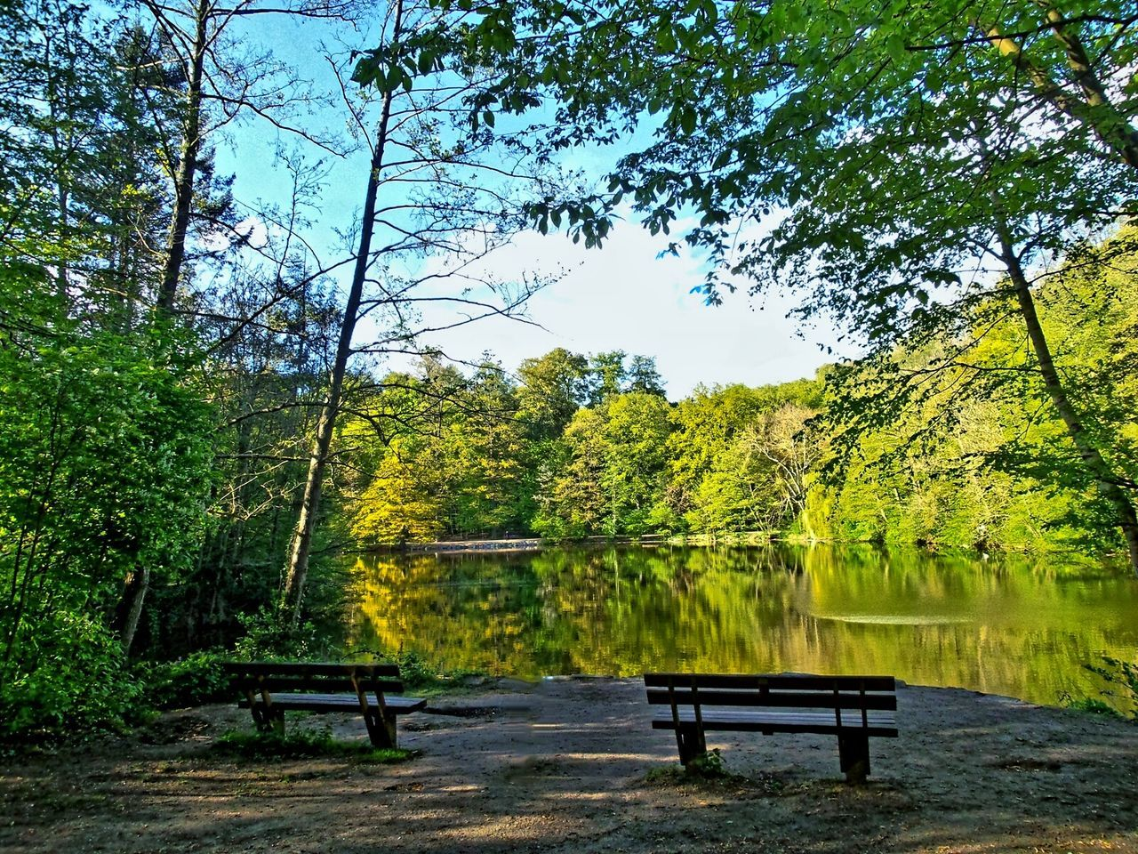 Calm Atmosphere Perfect View Lakeshore Forest Lake Empty Benches No People Hardcore Spring Spring Colors Blooming Trees Against Blue Blue Sky Water Reflections All Shades Of Green Landscape Waterscape All Kinds Of Trees City Forest Frankfurt Am Main Germany🇩🇪
