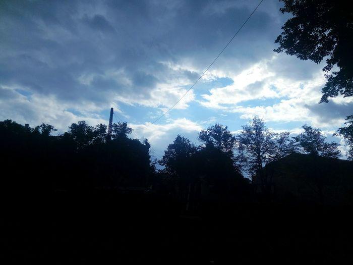 Over the tree topsTree Nature Silhouette No People Cloud - Sky Beauty In Nature Sky Outdoors Day