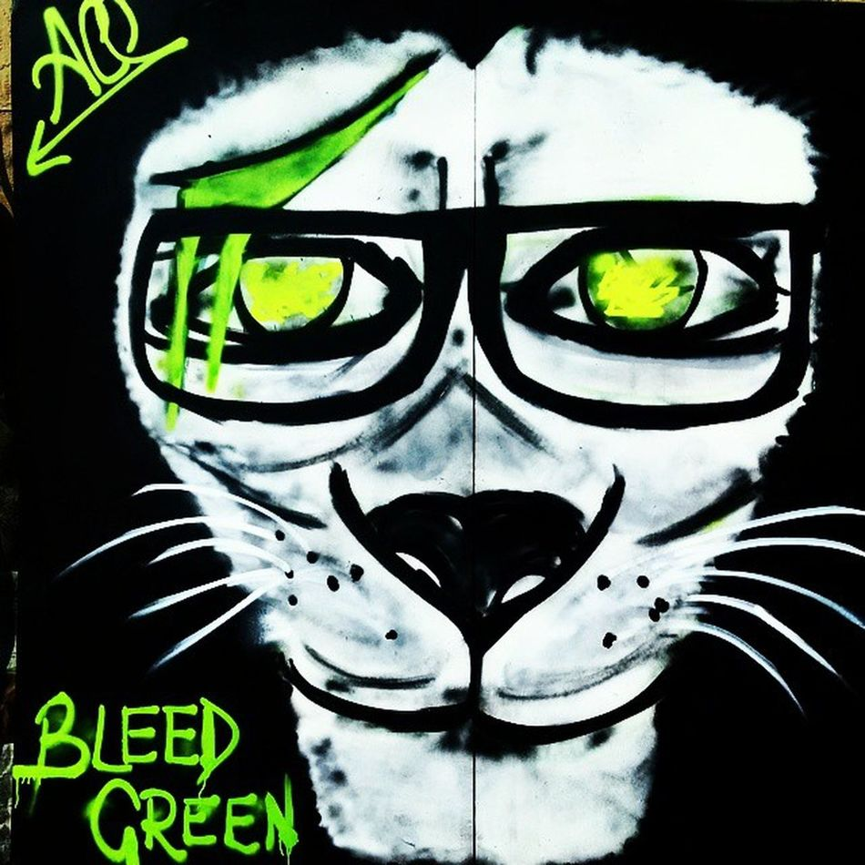 """""""Absolute green is the most restful color, lacking any undertone of joy, grief, or passion. On exhausted men this restfulness has a beneficial effect, but after a time it becomes tedious."""" Bleedgreen Green Graffiti Iitdelhi"""