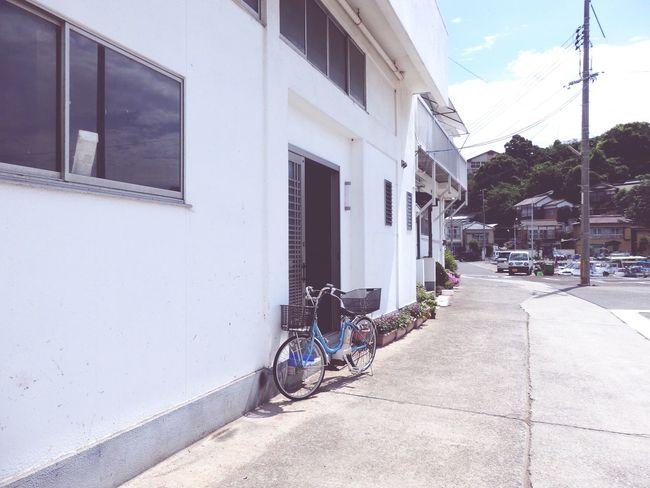 Japan Kashirajima Sunnyday☀️ Summer Summerdays