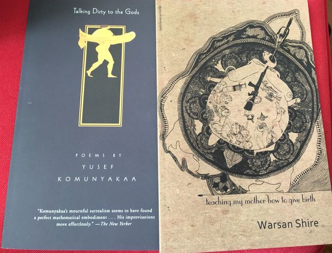 """What I'm reading now. """"Talking Dirty To The Gods"""" by American poet Yusef Komunyakaa and Teaching My Mother How To Give Birth"""" by Kenyan born Somali poet Warsan Shire. WarsanShire Yusef Komunyakaa Poetry What I'm Reading"""