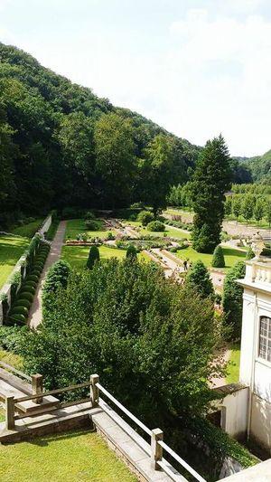 Schloss Weesenstein Schloßgarten Taking Photos Blick Von Oben Sachsen Beautiful Nature View Green