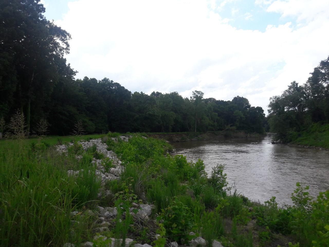The Wolf River Collierville Tennessee Walksinthewoods WalksInThePark Relax Johnsonpark Wolf River Smartphonephotography