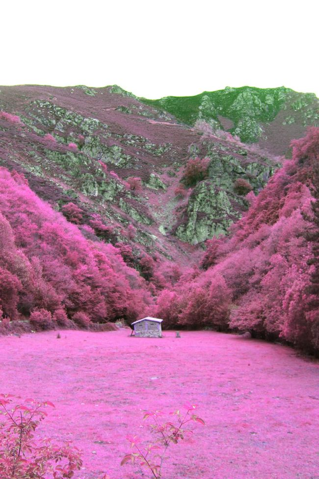 Imaginary Imaginary Landscapes Dreamland Beautiful Place Beautiful Dreams Alice In Wonderland Fantasy Surreal Imagination Fantasy World Fantastic Landscape Imagine Your World DreamScapes Thisismyworld Magical Places Dreams Come True Taking Photos Relaxing Hello World Landscape Nature Colors Infrared Places You Must To See