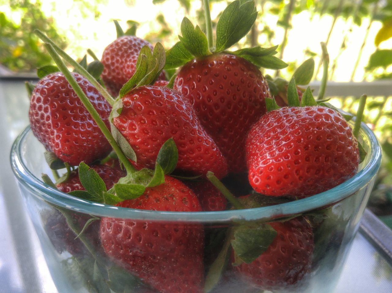 Fruit Strawberry Freshness Healthy Eating Close-up Berry Fruit Red No People Bowl Food Food And Drink Juicy Green Color Tasty Delicious Fruit Berries Strawberries Breakfast Natural Food And Drink Freshness Landscape Close Up Close Up Photography Agriculture