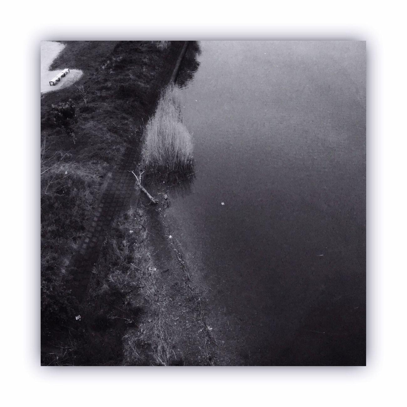 川を橋の上から撮る。 I Took The Rivers From On The Bridge Bridge River Monochrome_life Blackandwhite
