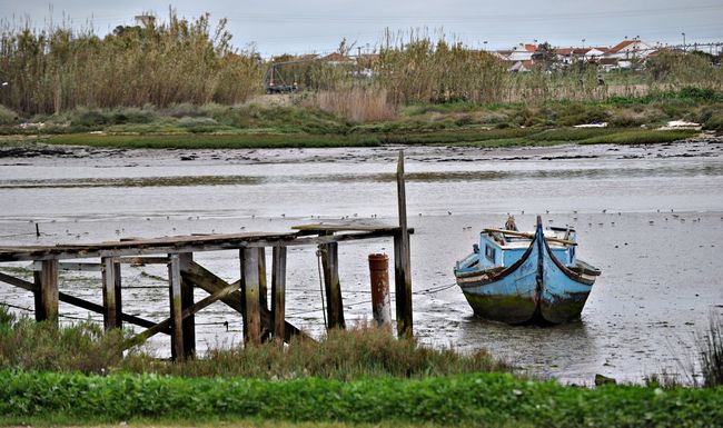 Boat Tranquility Tranquil Scene Water River Nautical Vessel Nature Portugal Riverbank Moored Outdoors Barco Rio Tejo Moita