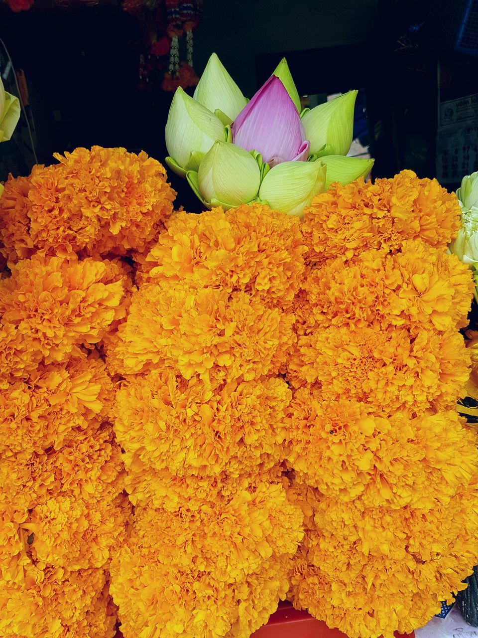 flower, freshness, flower market, fragility, for sale, retail, yellow, market, marigold, petal, flower shop, flower head, choice, beauty in nature, no people, close-up, nature, bouquet, day, outdoors