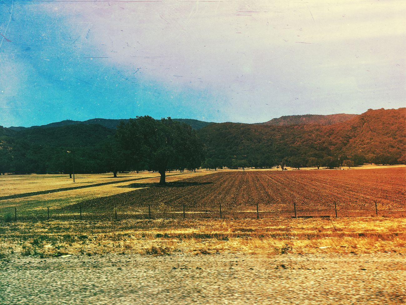 Santabarbara Landscape Landscape_photography Trees Grass Textures Imthe1will Colors Mextures Mexturesapp
