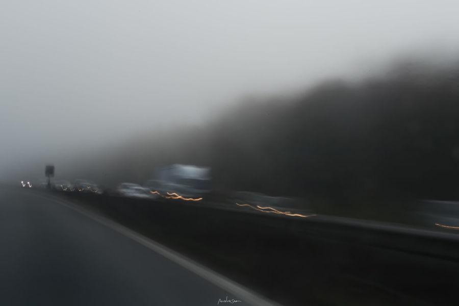 FogyDay Filtr Fog