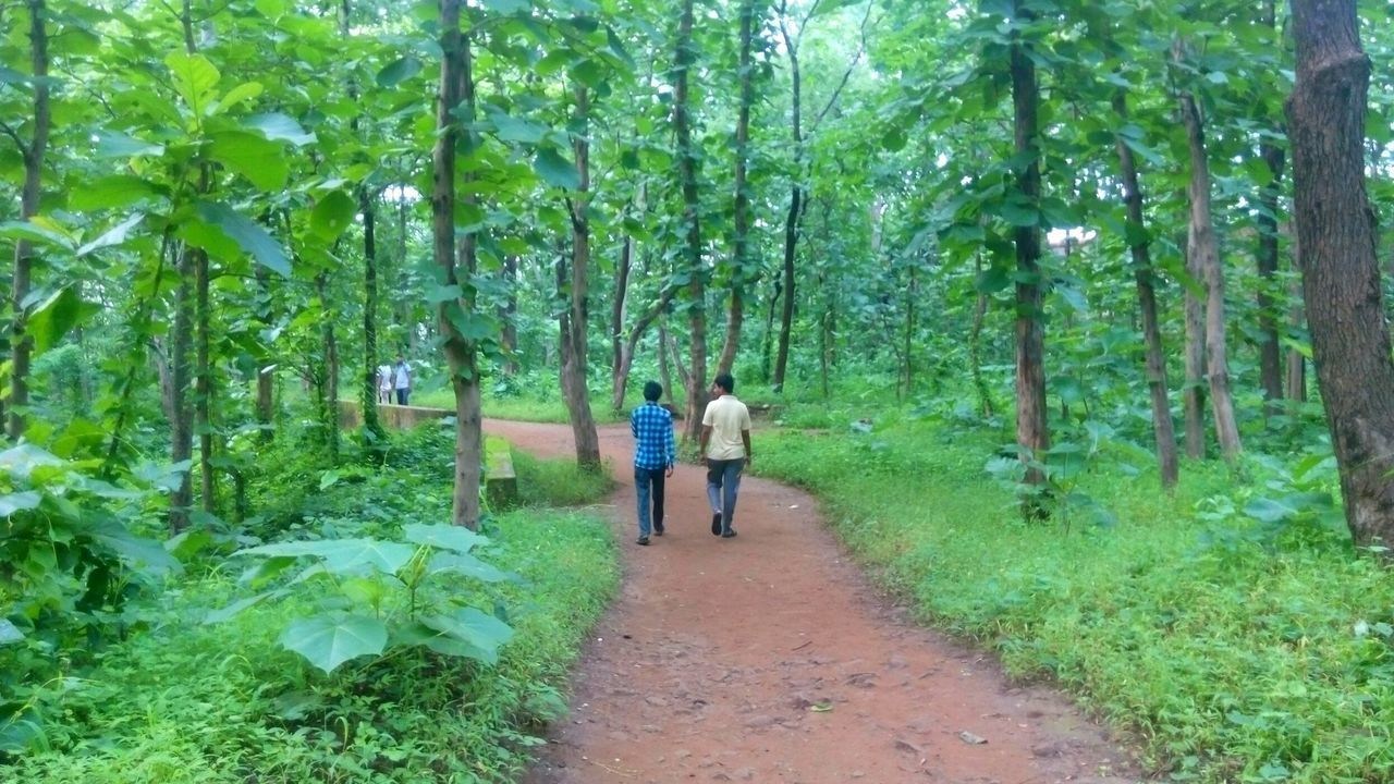 Heyyyy, Bff Best Friends Fotever Walking Around Way Through Forest Fitness Talking Photos Talking About Hollywood But Still A Lot To See In Nagpur,India A Bird's Eye View Two Is Better Than One