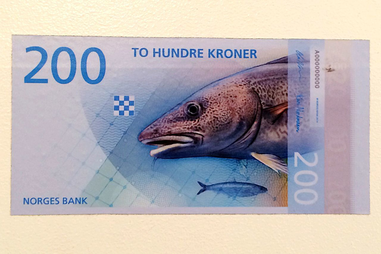 Euro Money Cash Fish Norway