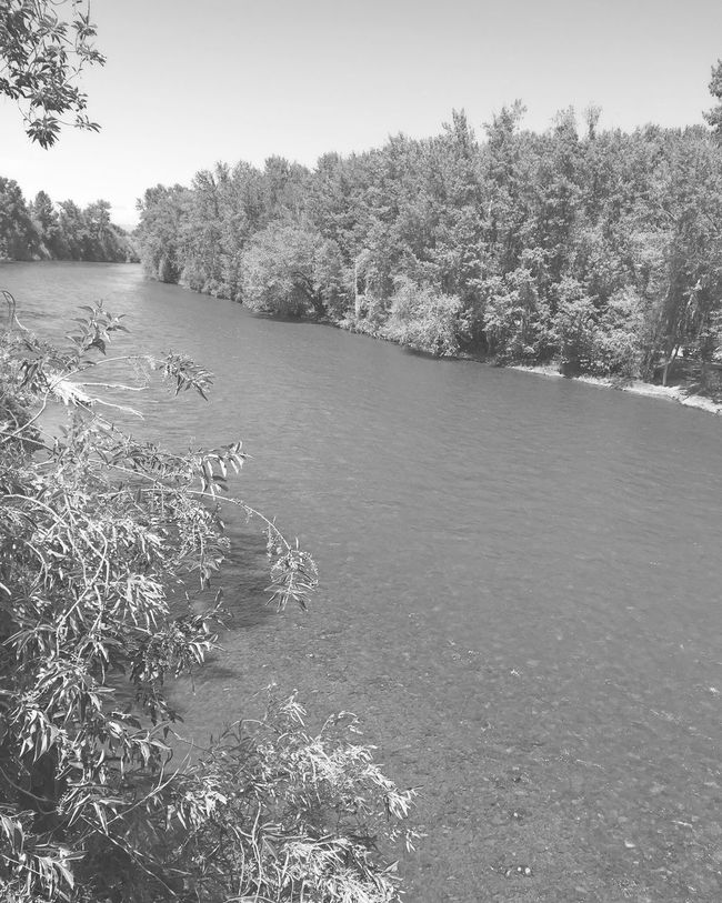 Blackandwhite River Black And White Photography Spring Day