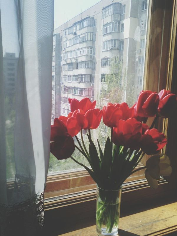 Flovers♥ Sping