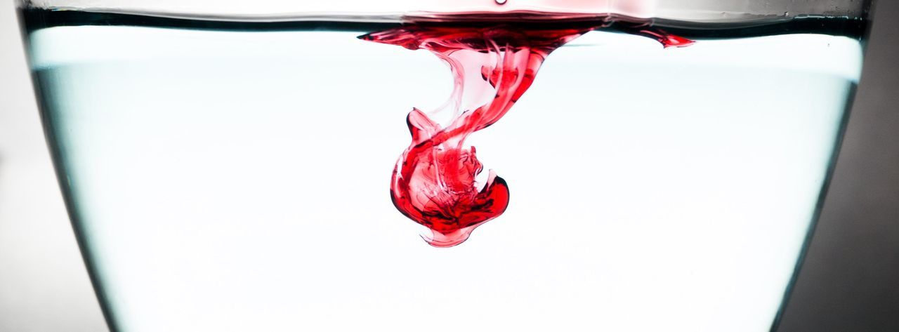 While I experimented with water, an external flash and sirup I was lucky to get a shot like this. On first sight its just a splash of red sirup in water but on the second view one could see an animal. What do you see? Art Colorful Creativity Evolution  Evolving Grace Hanging Liquid Liquidart No People Red Ruby Beach Splash Of Color Studio Shot Traces Water White Background EyeEmNewHere Weekly Eyeem Christal  EyeEmNewHere