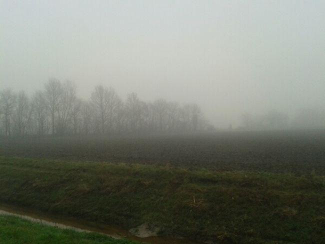 11.12.13 Haren_Ems