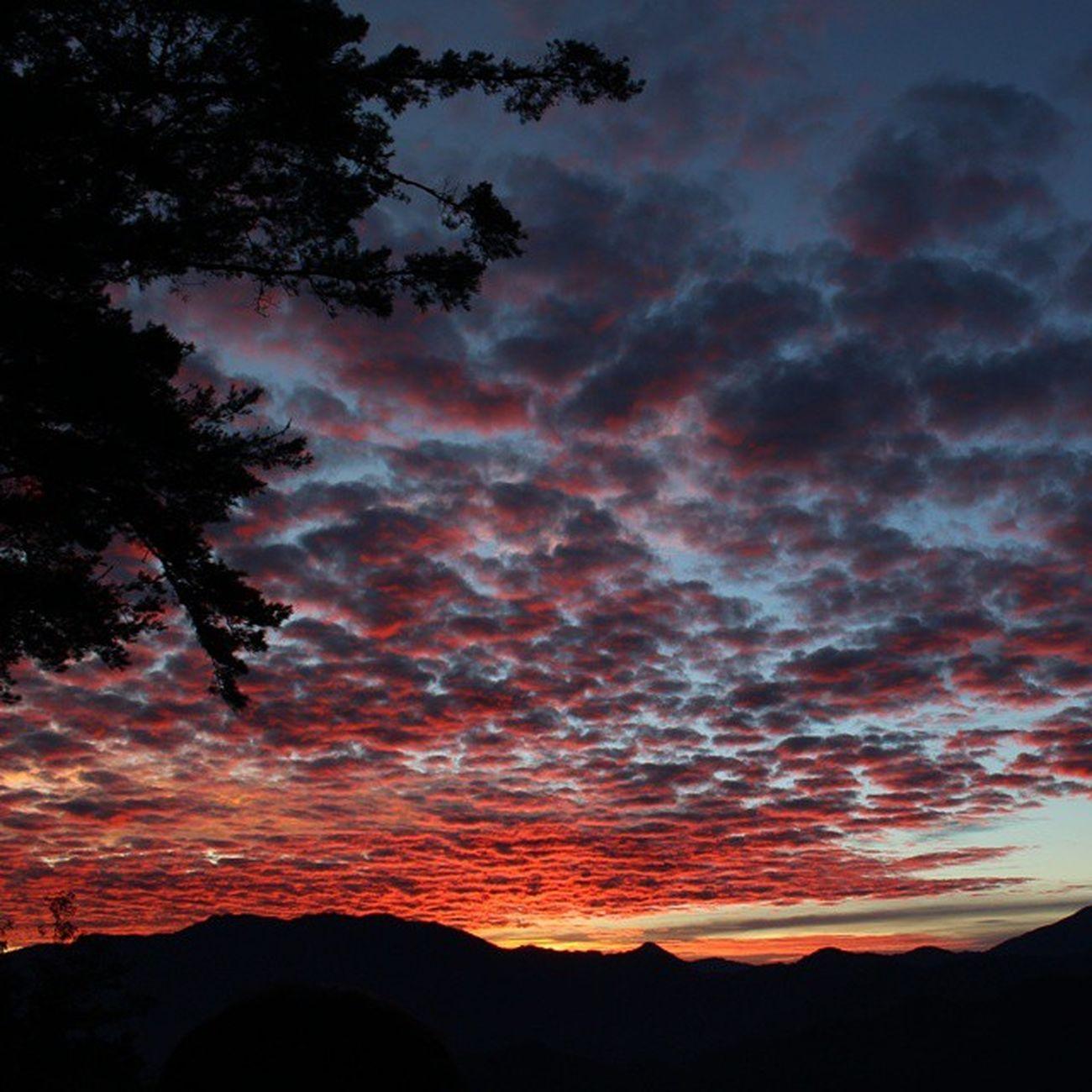 ⛅ 覺得幸運 第一次來阿里山看日出 真的有被美到... 阿里山日出