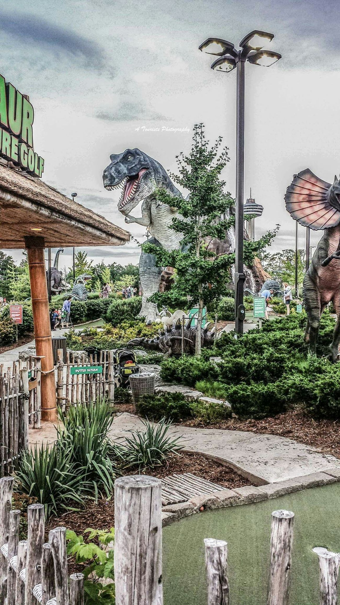 A Tourist's Photography TRex  Tyrannosaurusrex Dino Dinosaur Theatrical Panic Calm Scary Teeth Adventure Thrill Thriller Thrilling Park Beware