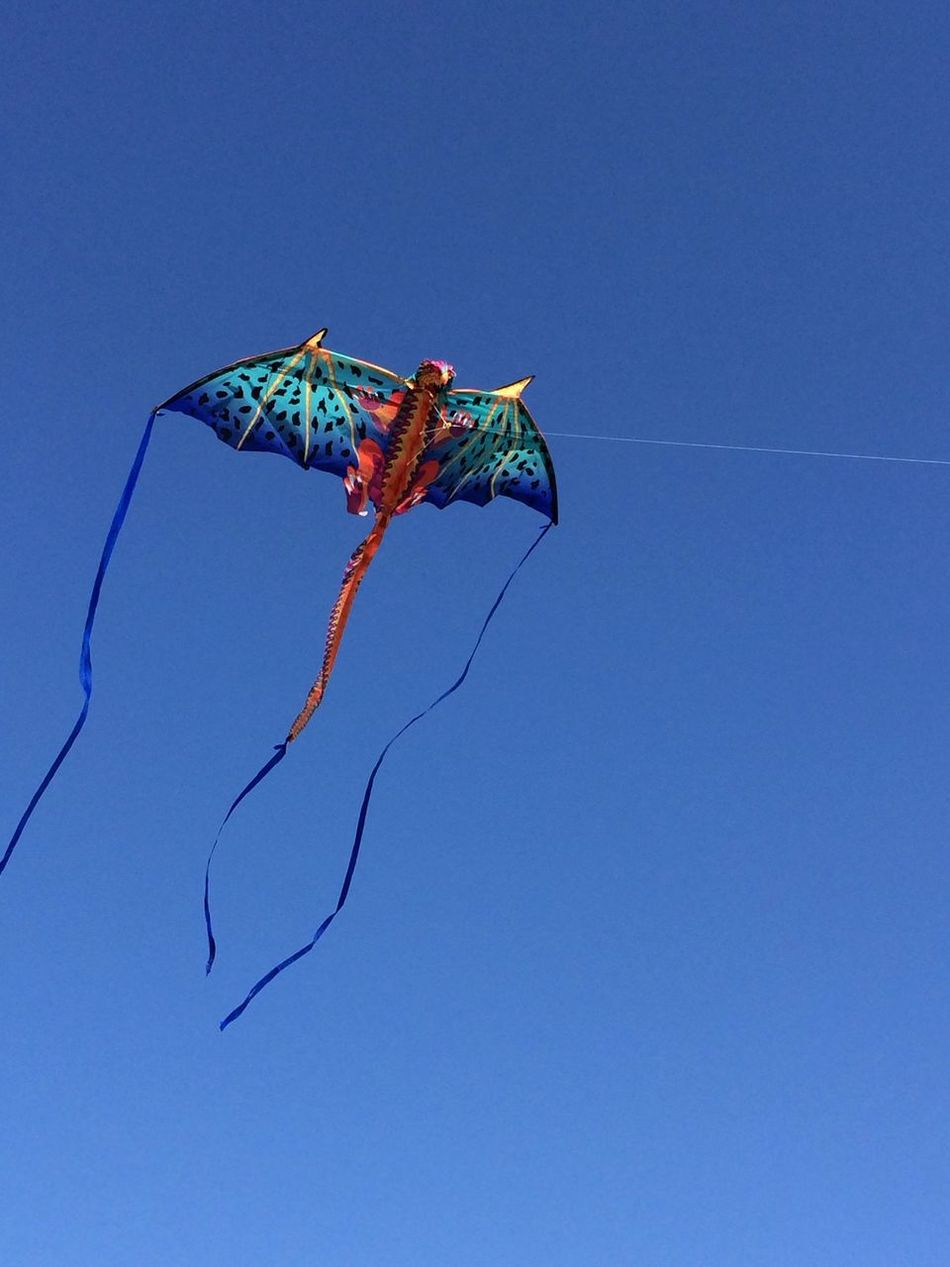 Blue Clear Sky No People Outdoors Sky Flying A Kite Flying High Beautiful Day Kites Dragons San Pedro California USA