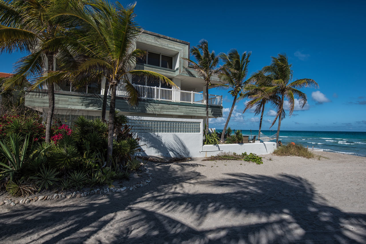 Living Color Architecture Beach Beach Photography Beauty Beauty In Nature Blue Day Lifestyle Photography Luxury Nature Nikon D750 No People Outdoors Palm Tree Photographyisthemuse Sand Sea Sky Sunlight Tranquility Travel Tree Tropical Climate Vacations Water