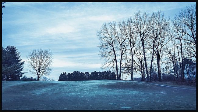 Bare Tree Tree Auto Post Production Filter Transfer Print Branch Snow Tranquil Scene Sky Cold Temperature Winter Tranquility Scenics Cloud Nature Beauty In Nature Cloud - Sky Day Outdoors Treelined Non-urban Scene