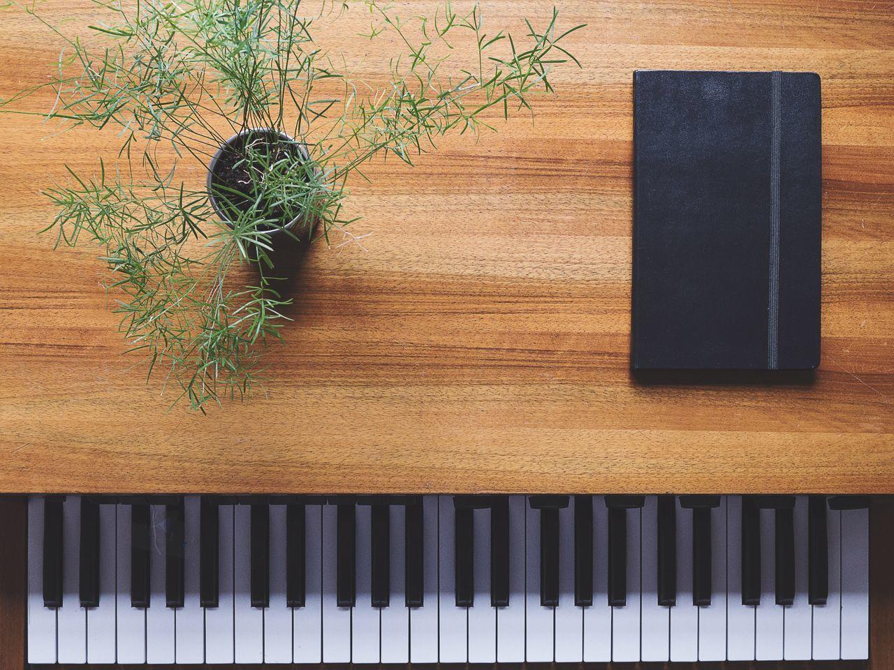 TakeoverMusic Piano keyboard philicorda zen Piano Moments