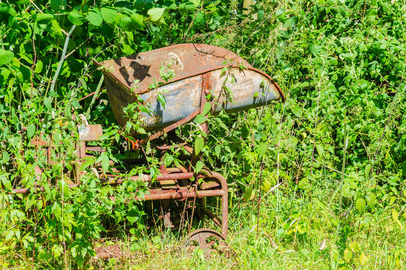 Old coal weighers. With this weighers, the coal was weighed and bagged. Abandoned Damaged Day Equiqment And Devices Field Grass Green Color Growth Nature No People Old Coal Weighers Outdoors Overgrown Runs Wild Plant Retrurn Ot The Nature Rusty