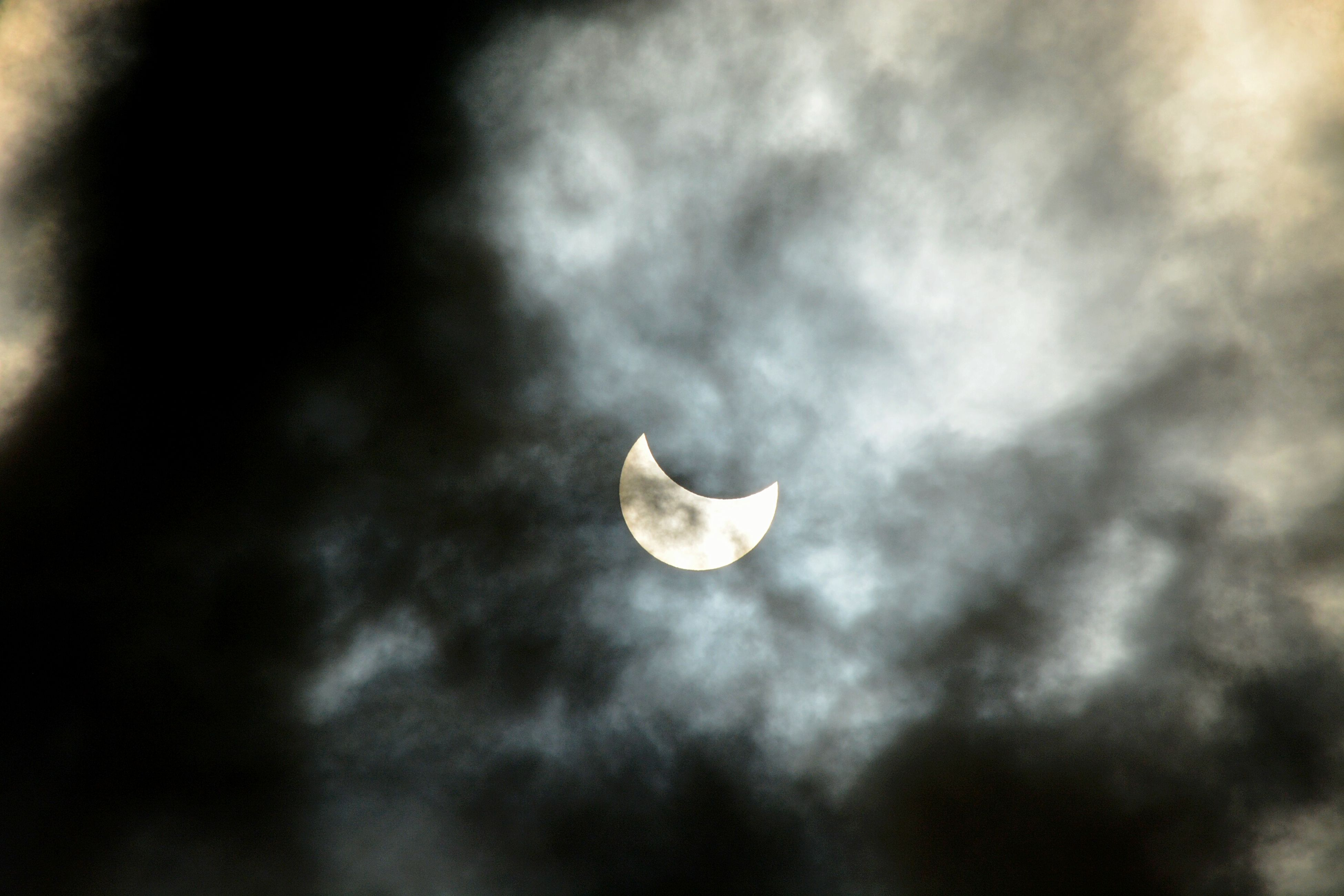 beauty in nature, nature, no people, outdoors, moon, cloud - sky, tranquil scene, close-up, sky, fragility, day, animal themes