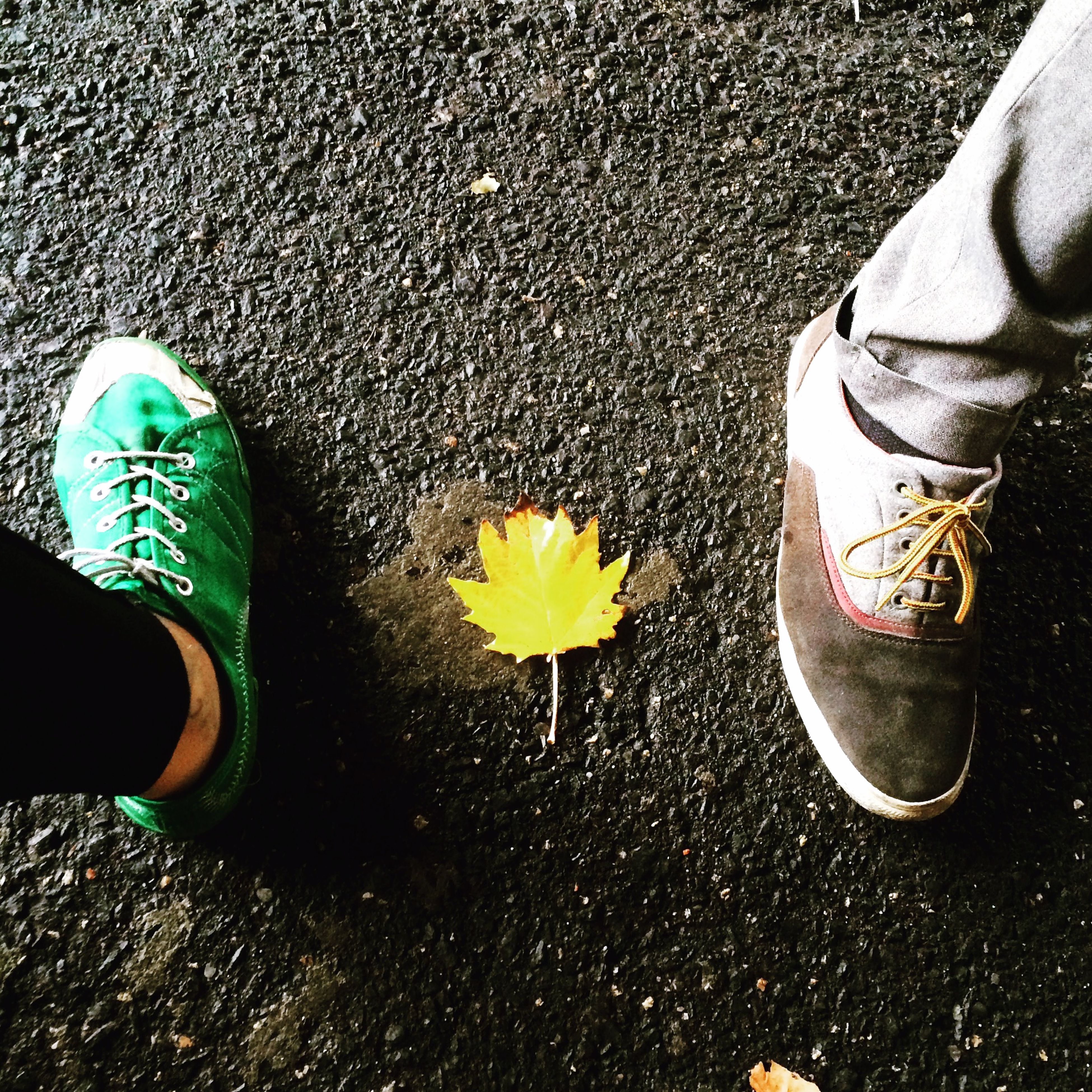 shoe, low section, person, high angle view, street, footwear, personal perspective, human foot, standing, pair, yellow, canvas shoe, asphalt, flower, road, leaf, part of