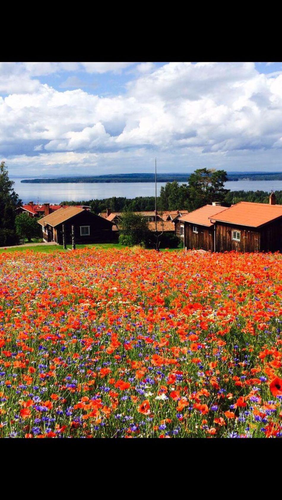 What a beautiful view😍🌸 Dalarna. Sweden. 🇸🇪 Sweden Dalarna