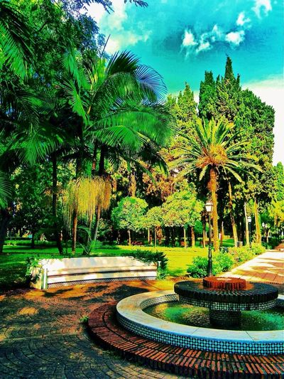 Parque,Marbella