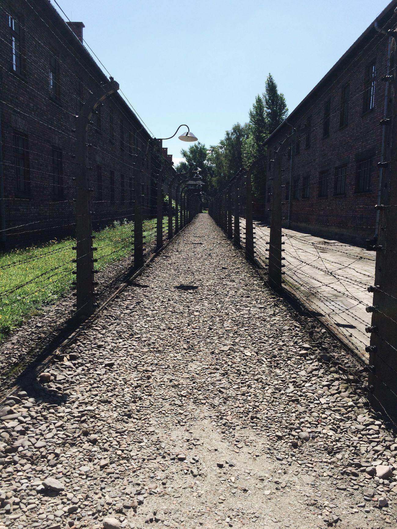 Jmj JMJEUFUI JmjCracovia2016 Jmj2016 Wyd WYD2016 Poland Polska Auschwitz  Auschwitz Birkenau Auschwitz Memorial Auschwitz_Birkenau Poland Is Beautiful