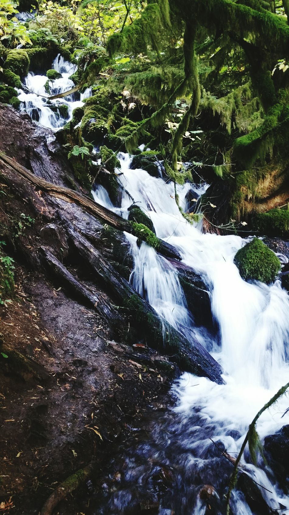 Waterfall Nature Multnomah Oregon Pacific Northwest  Hiking Fairytale  HCII Photos Forest