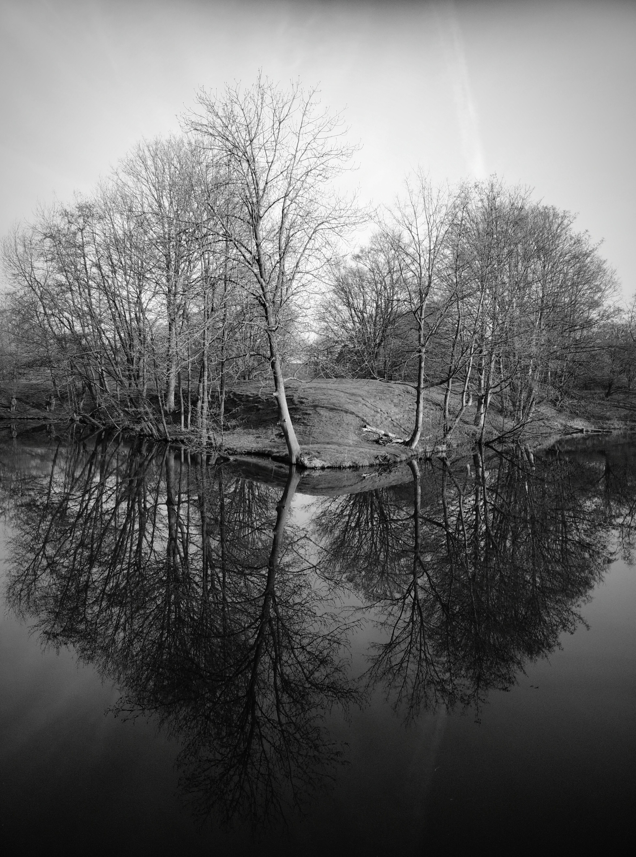 Tranquility near Fort Jutphaas Nieuwegein Jutphaas Landscape Monochrome Water Reflections
