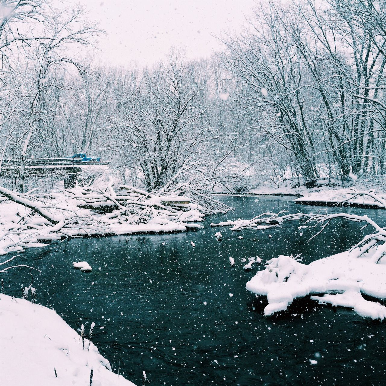 Jackson Creek Winter Taking Photos Countryside Landscape Nature Water Snow