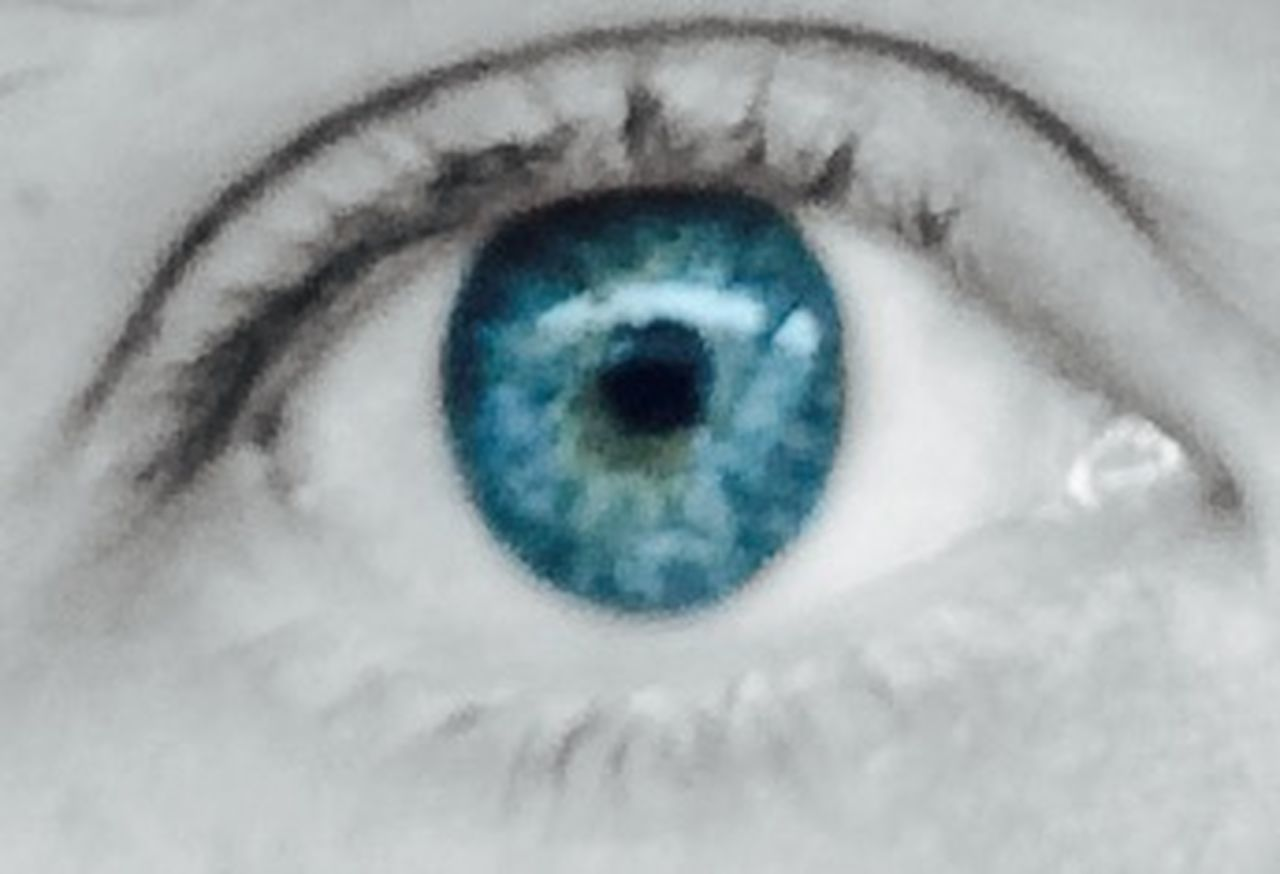 human eye, human body part, eyelash, sensory perception, one person, iris - eye, people, eyesight, blue, close-up, eyeball, one woman only, full frame, adult, looking at camera, only women, adults only, one young woman only, real people, indoors, day