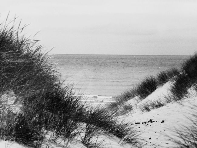 Entre Houlegate et Deauville Horizon Over Sea Blackandwhite Photography Horizon View Sea Nature Water Beach Scenics Tranquility Beauty In Nature Outdoors Tranquil Scene Sand Clear Sky No People Marram Grass Grass Day Sky