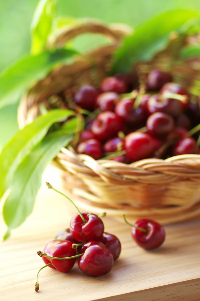 wooden basket of fresh ripe cherries on the wooden table Berry Fruit Cherries With S Close-up Food Freshness Healthy Eating Nature Raw Food Red Ripe Wooden Basket