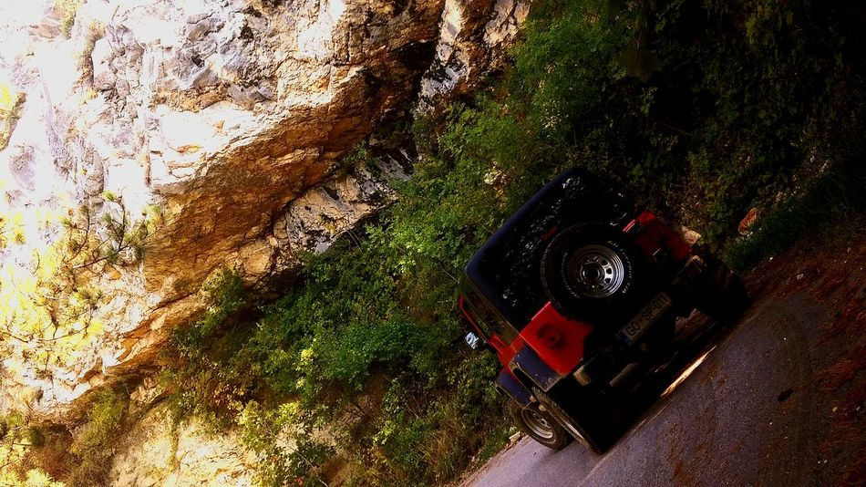 High Angle View Day No People Outdoors Nature Forest Jeep Life ❤ Jeep Red Beauty In Nature Jeep Tours JeepneyMoments Mountain Lifestyles EyeEm Selects Jeep Wrangler Unlimited Mountain Range One Man Only Riding Road Driving Jeeplove