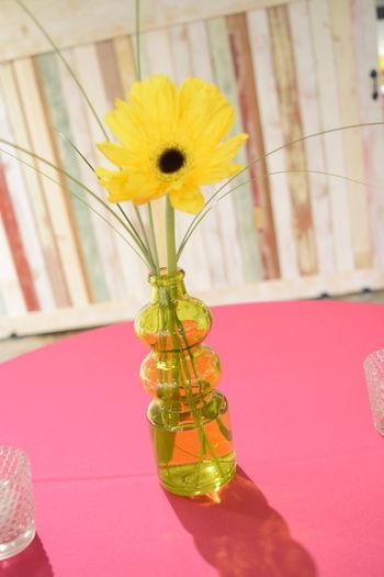 Single Stem Flowers Daisy Flower Bud Vase Centerpiece Bright Colors