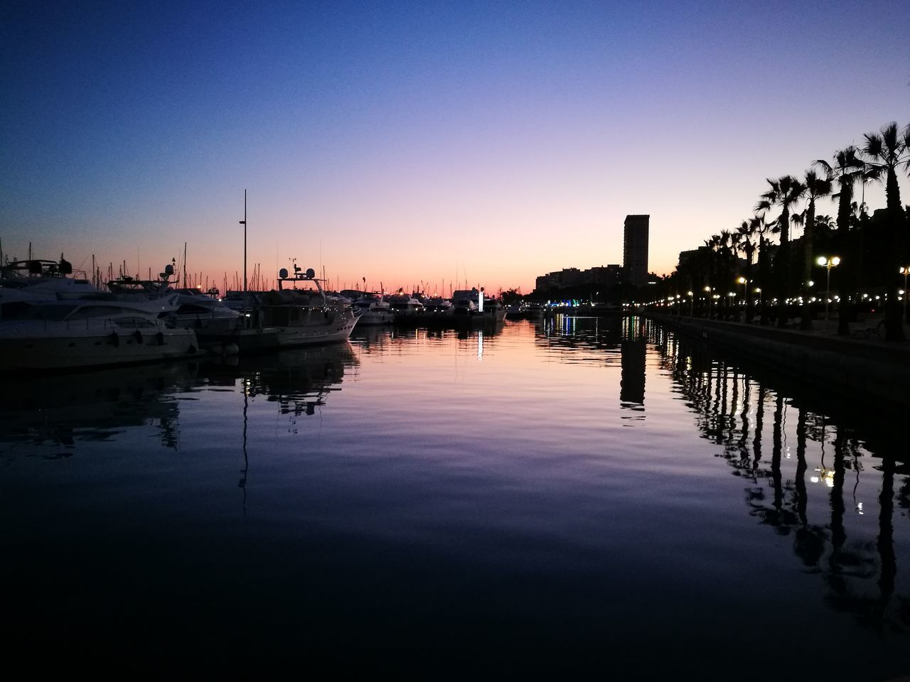 Puerto de Alicante Outdoors Water Nature No People Sea And Sky Sea Sinfiltros Espectacular Arrival Tranquility Nautical Vessel Reflection Sunset Sky Vacations Tree Day