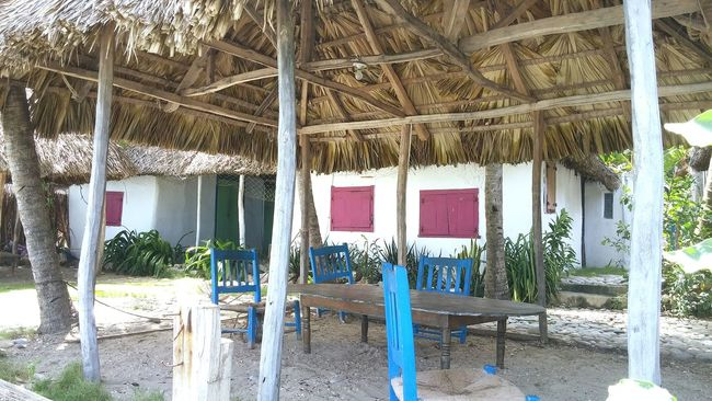 Built Structure Building Exterior Tree Trunk Outdoors Day Weathered Beachlife Beachtime Summerdays  Summerdays  Summertime Nopeople Table Chairs Wooden Chairs Colorful Summer Vacation Color Photography Summer2016 Bench Blue Tranquility Tranquil Scene Beachhut Beach House