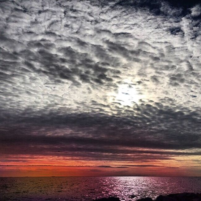 Yeşilköy Seaside❤️ Sunset #sun #clouds #skylovers #skyporn #sky #beautiful #sunset #clouds And Sky #beach #sun _collection #sunst And Clouds Hello World Hi! Taking Photos Enjoying Life Hanging Out Istanbulove Istanbul Yesilköy Sky And Sea Nature Eyerm Beatiful Photography Pictureoftheday Colors Sunshine