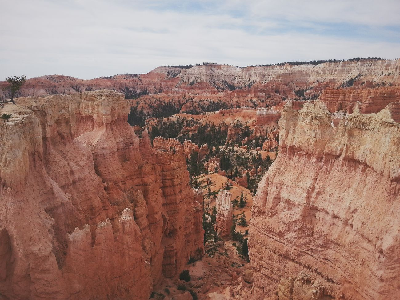 Beautiful stock photos of grand canyon, Arid Climate, Barren, Beauty In Nature, Canyon