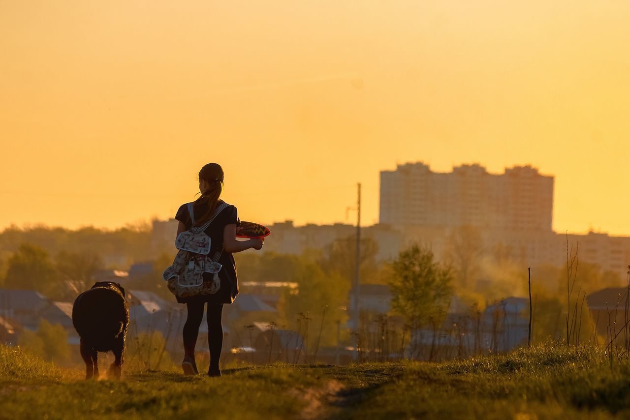 Russia Togetherness Walking Sunset Full Length Real People Leisure Activity Bonding Rear View Family Field Boys Love Girls Father Childhood Lifestyles Men Grass Dog Nature Walk This Way Walking Around