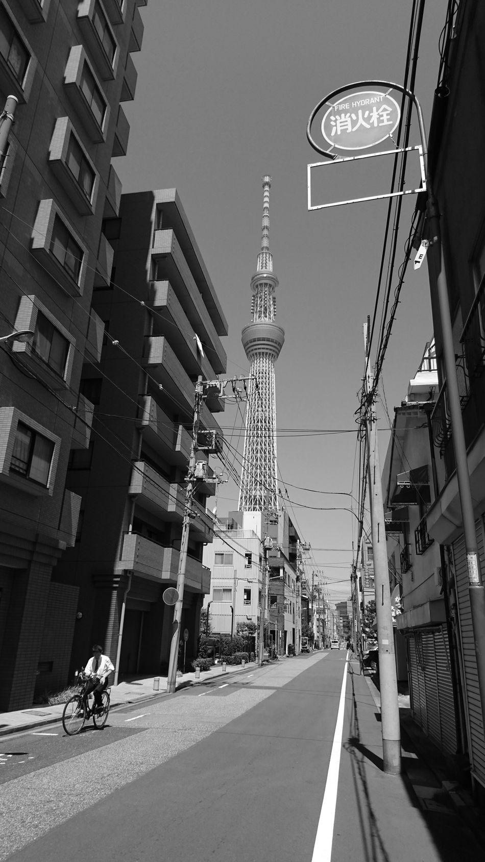 東京スカイツリー 町の風景 日常的風景 日常 Street Photography On The Road Tokyo Street Photography TOWNSCAPE Black And White Monochrome Monochrome_life Perspective Vanishing Point Capture The Moment From My Point Of View Tokyo Snapshot EyeEm Best Shots - Black + White