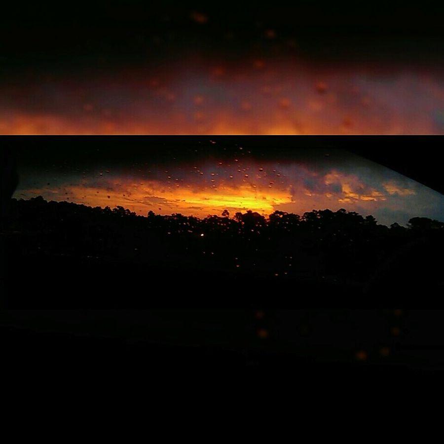 SunsetAfterTheRain Rain Raindrops Sunset Trees Clouds Orange Sky