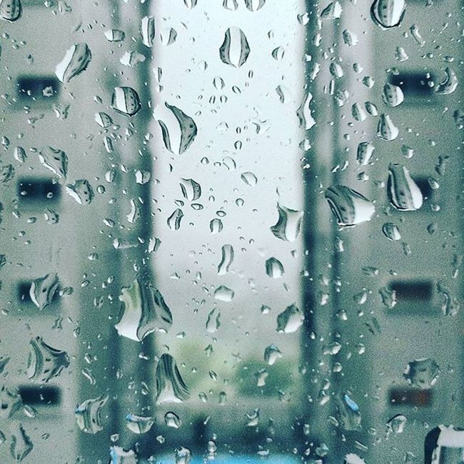 I 💜 rainy days. It's so nonchalant, peaceful. A cup of hot cocoa, a warm blanket and a good book. Perfect RainyDays Peaceful Serenity Lifeisbeautiful