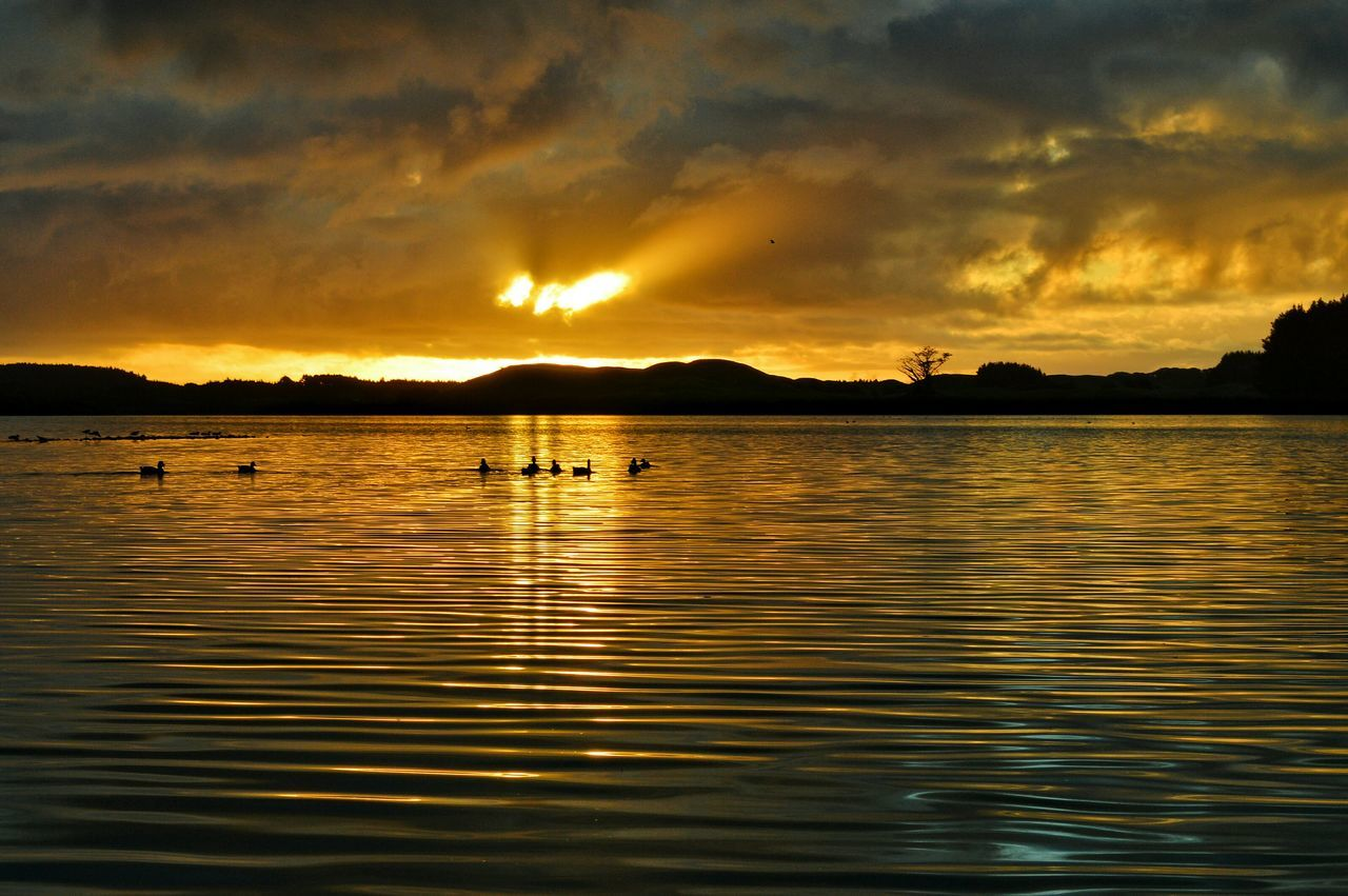 Two minute drive from my doorstep. . . lake Horowhenua N.Z. 🙋🙋👍👍😘😘🏃🏃 Lake View Levin Water Reflections Ripples Sunset Silhouettes Sunset_collection Having Fun Capturing The Moment Nature Nature On Your Doorstep Kiwi Clicker New Zealand Scenery Eye4photography  Tadaa Community Landscape Getting Inspired Things I Like Skylovers EyeEm Masterclass Malephotographerofthemonth Beautiful Nature Beauty In Nature From My Point Of View Hello World Sunset